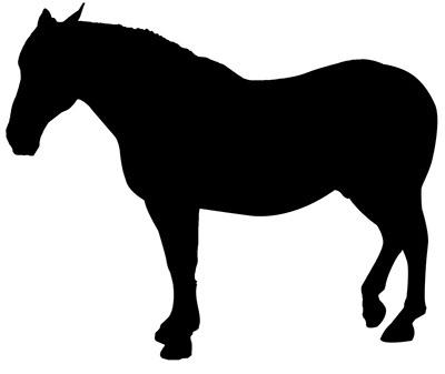 Le cours de dessin 1 - Dessin cheval de trait ...